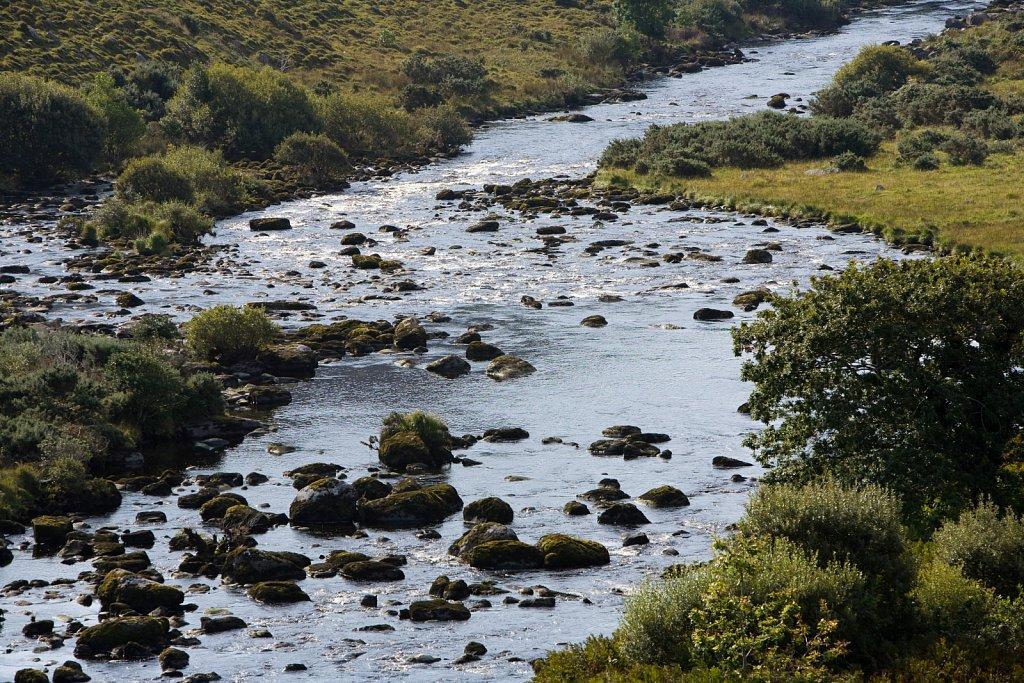 irland-2008-093.jpg