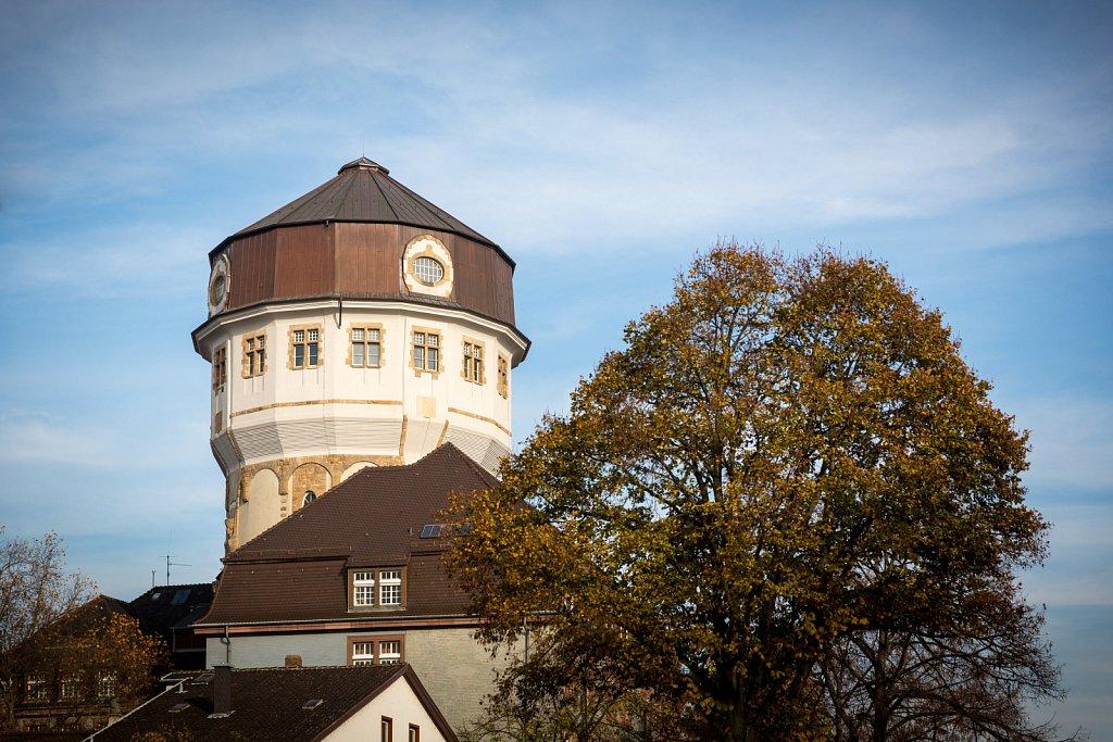 mannheim-2014-01.jpg