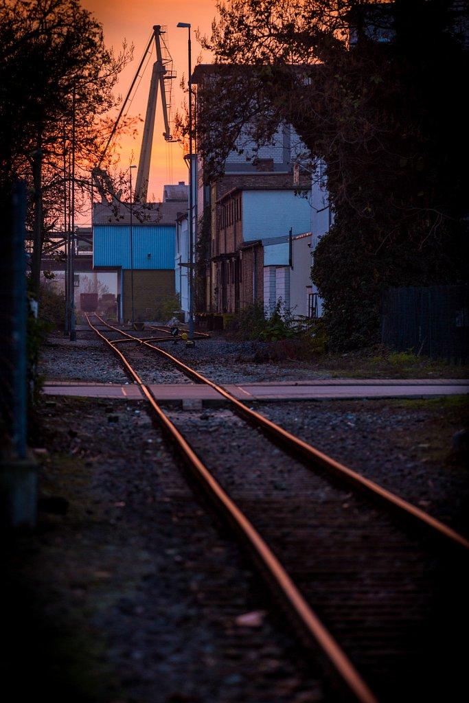 mannheim-2014-59.jpg
